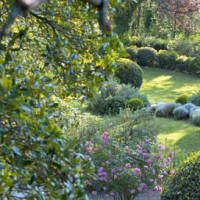 Dettagli del giardino