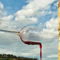 Vino Montepulciano d'Abruzzo (Daniele Di Pillo)