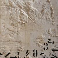 Daniela Marchetti - La caduta dei numeri