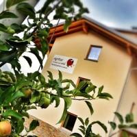 Offerta per il Festival delle birre artigianali in Trentino