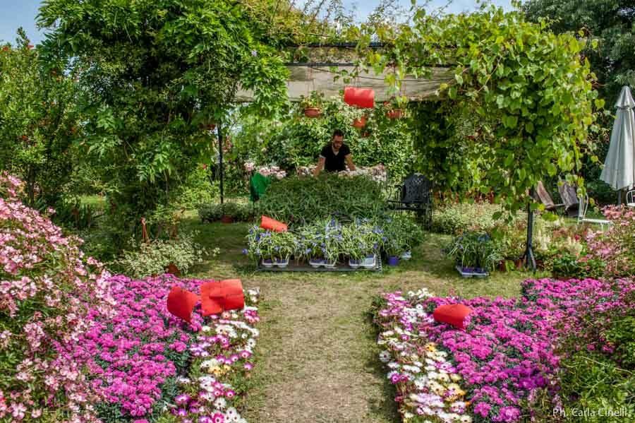 Giardinaria