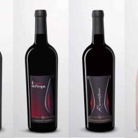 Il vino primitivo di Vespa: eccellenza tutta italiana