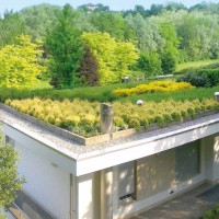 Verde sul tetto: il ritorno dei Giardini Pensili