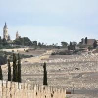 Gerusalemme riscopre la cultura