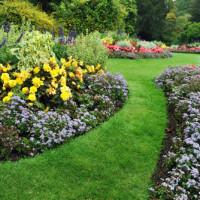 Cinque idee per un giardino strepitoso