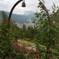 Roseto-Dolomiti (3)