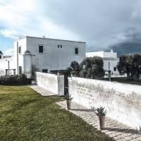 Olio d'oliva: il giallo tesoro di Puglia