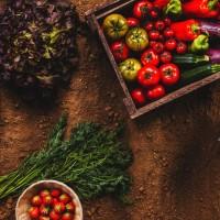 Coltivare un orto, la passione degli Italiani