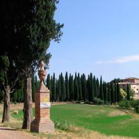 Castelnuovo-Tancredi (3)