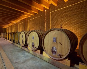 Vino-barolo