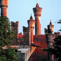 Viridalia 2016 – il cuore verde di Vicenza