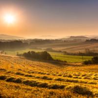 Vino biodinamico dalle colline Pisane