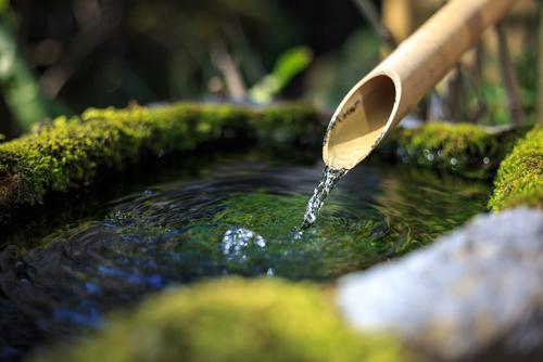 Giardino zen quattro facce di verde ville casali - Immagini di giardini di villette ...