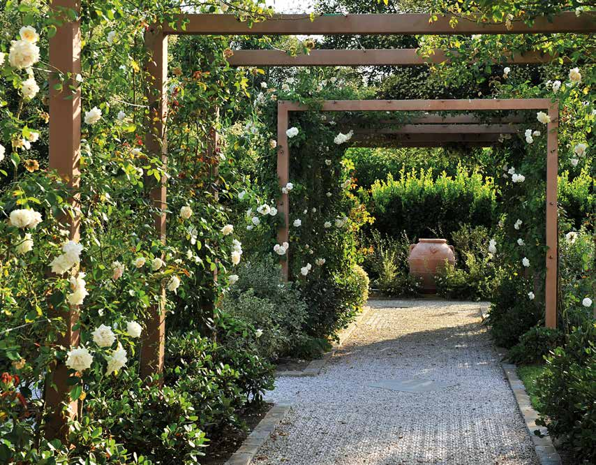 Latest creare un giardino with creare giardino for Creare un giardino