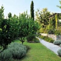 Creare un giardino3