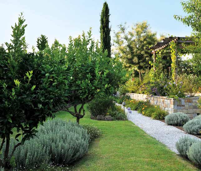 Creare un giardino un regno colorato di relax for Trasforma un semplice terreno in un colorato giardino