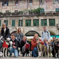 Verona pet friendly: a spasso tra la storia