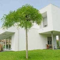 Villa moderna: giochi di design ed alte prestazioni