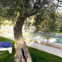 Ragusa Ibla: una terrazza da sogno