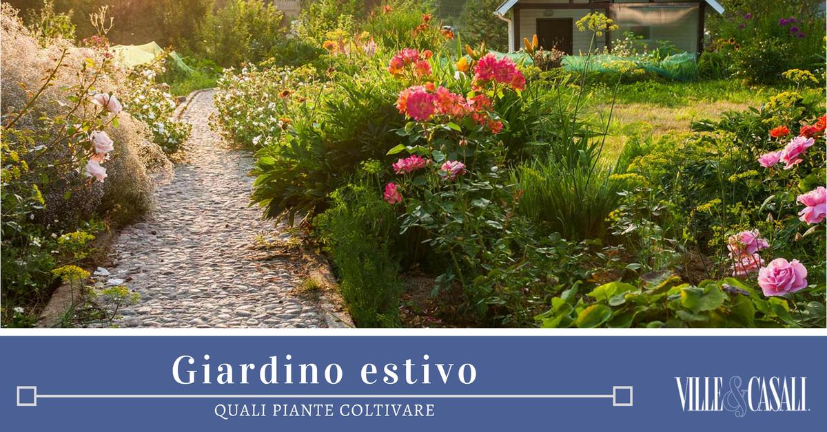 10 piante per il giardino estivo ville casali - Piante per il giardino ...