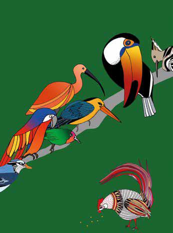 pappagalli dipinti