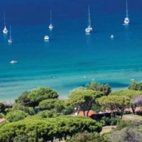 Viaggi, Isola d'Elba: tra natura e cultura