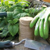 I lavori per il giardino a Febbraio