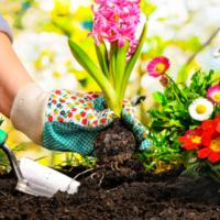 Le pratiche per la manutenzione del giardino in aprile