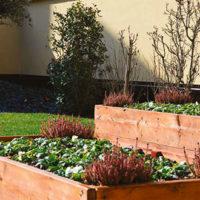 Segreti verdi e sostenibili nel borgo Città Nuova ad Alessandria