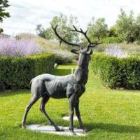Semplicità toscana: un giardino vivo e in continua evoluzione