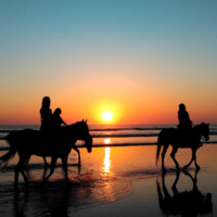 A cavallo sulla spiaggia (ph www.turismoacavallo.com)