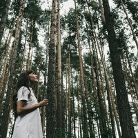 Forest Bathing: immergersi nei boschi per curarsi dallo stress