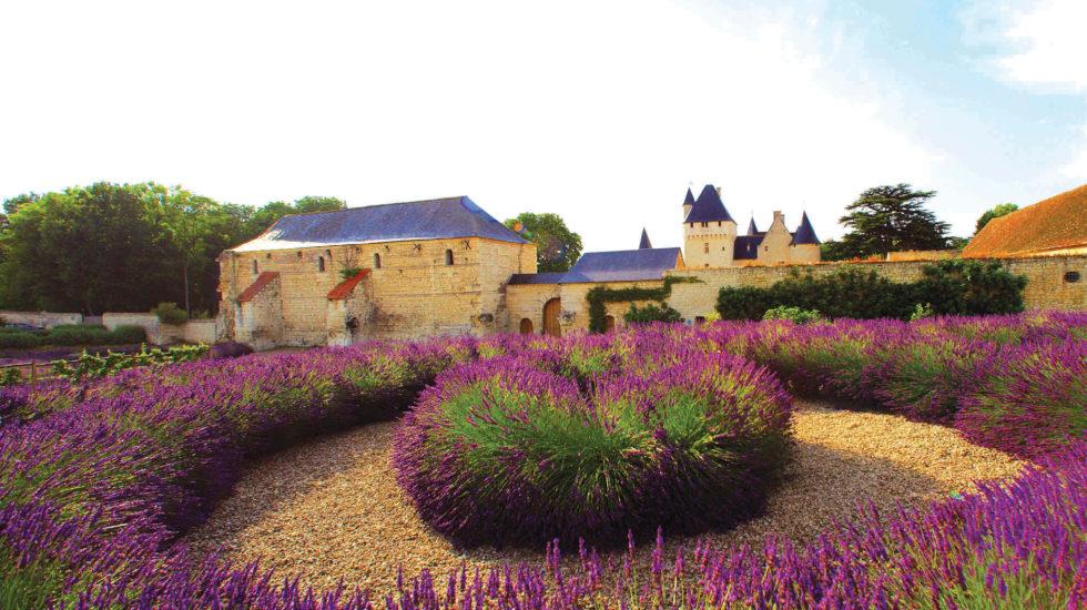 Al castello medievale di Rivau tra arte e specie rare