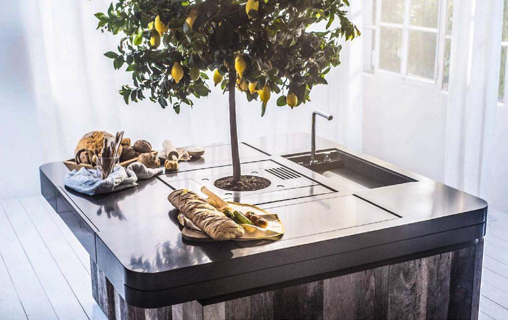 Stefano Boeri mette una pianta al centro della cucina