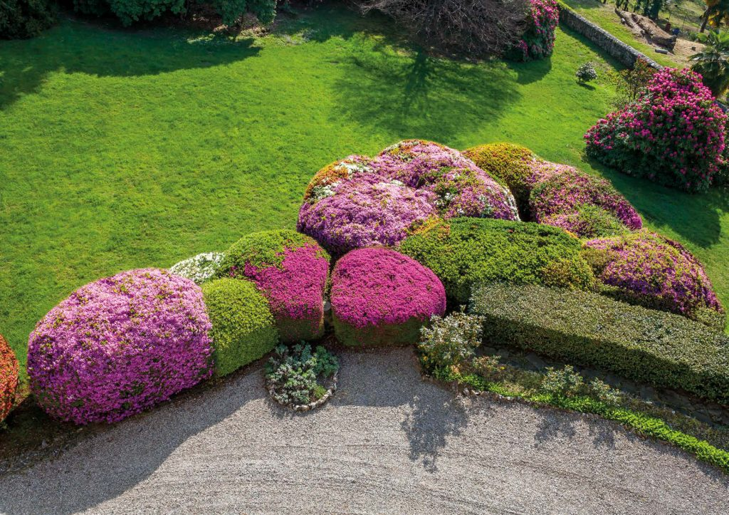 i nuovi colori di un giardino antico anni 20 riqualificato