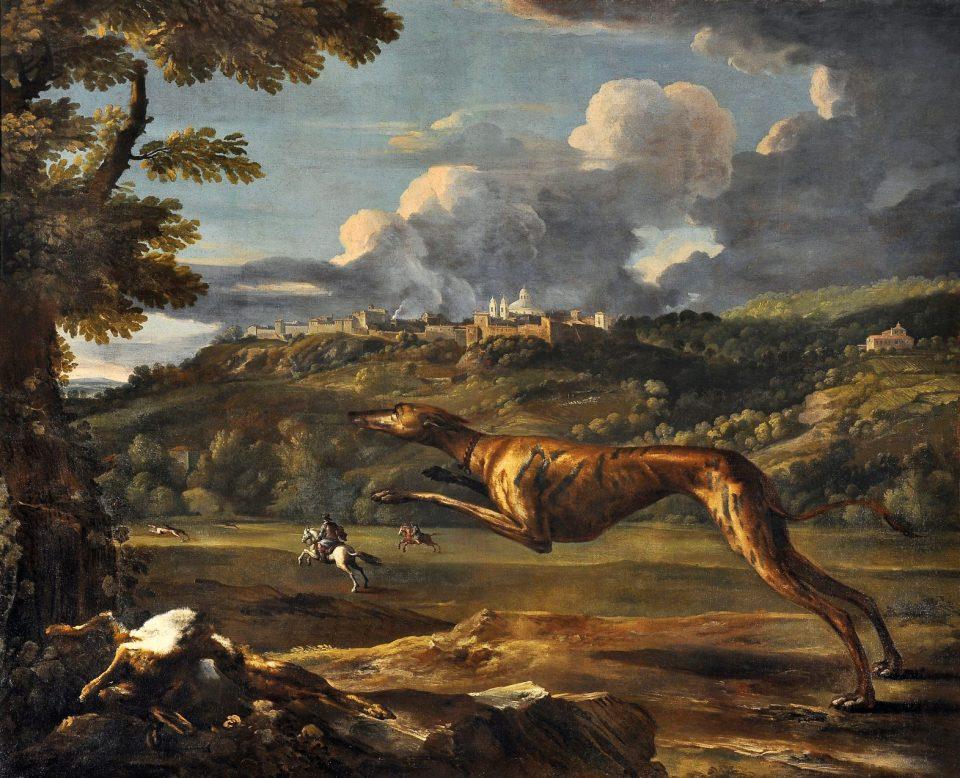 M. Pace, cane levriero con Ariccia