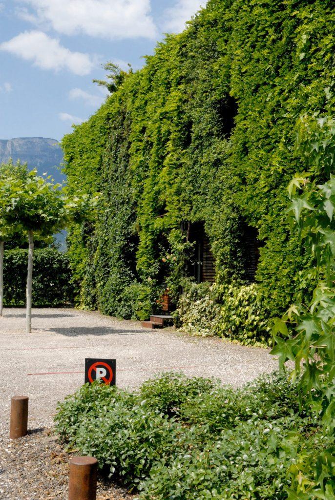 I giardini verticali esterni possono essere molto ampi e purificare maggiormente l'aria