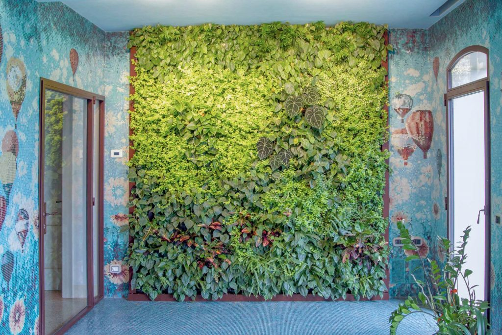 Le pareti verdi donano un fascino unico alla casa e ne garantiscono la salubrità