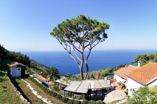 Villa in Vendita a Monte Argentario (GR)