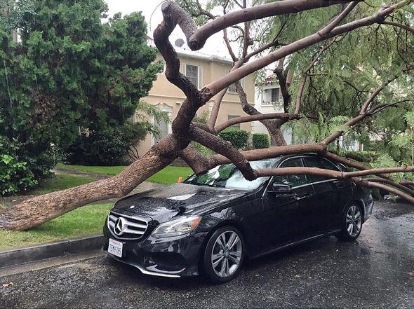 Mercedes-Benz Райана Филиппа
